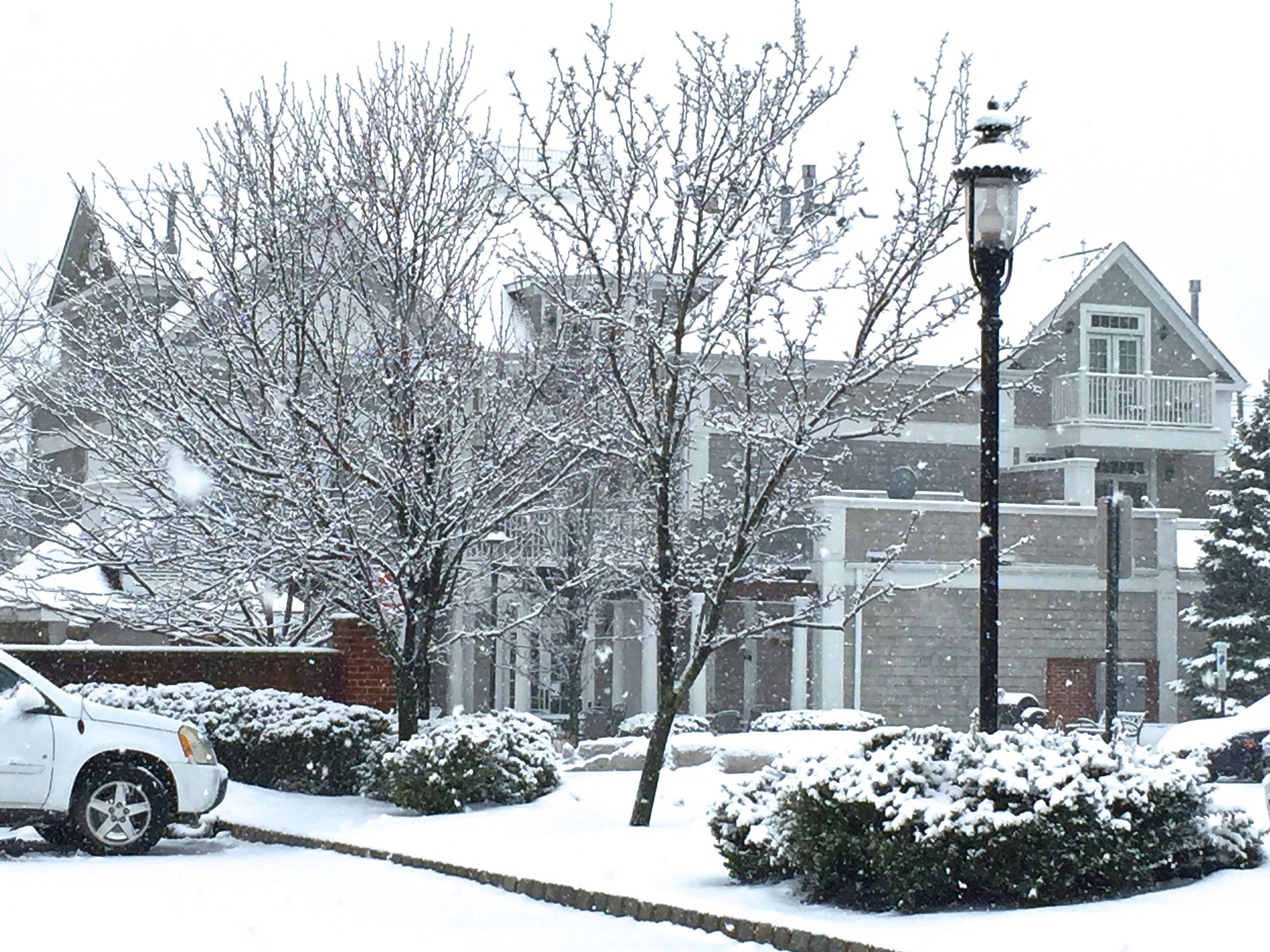 rear_snow
