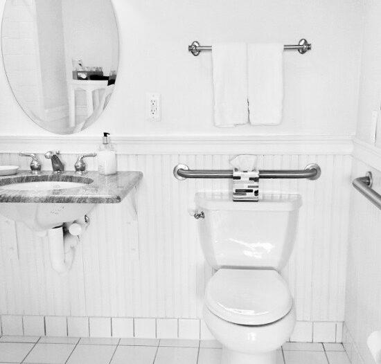 Grab bars surround toilet